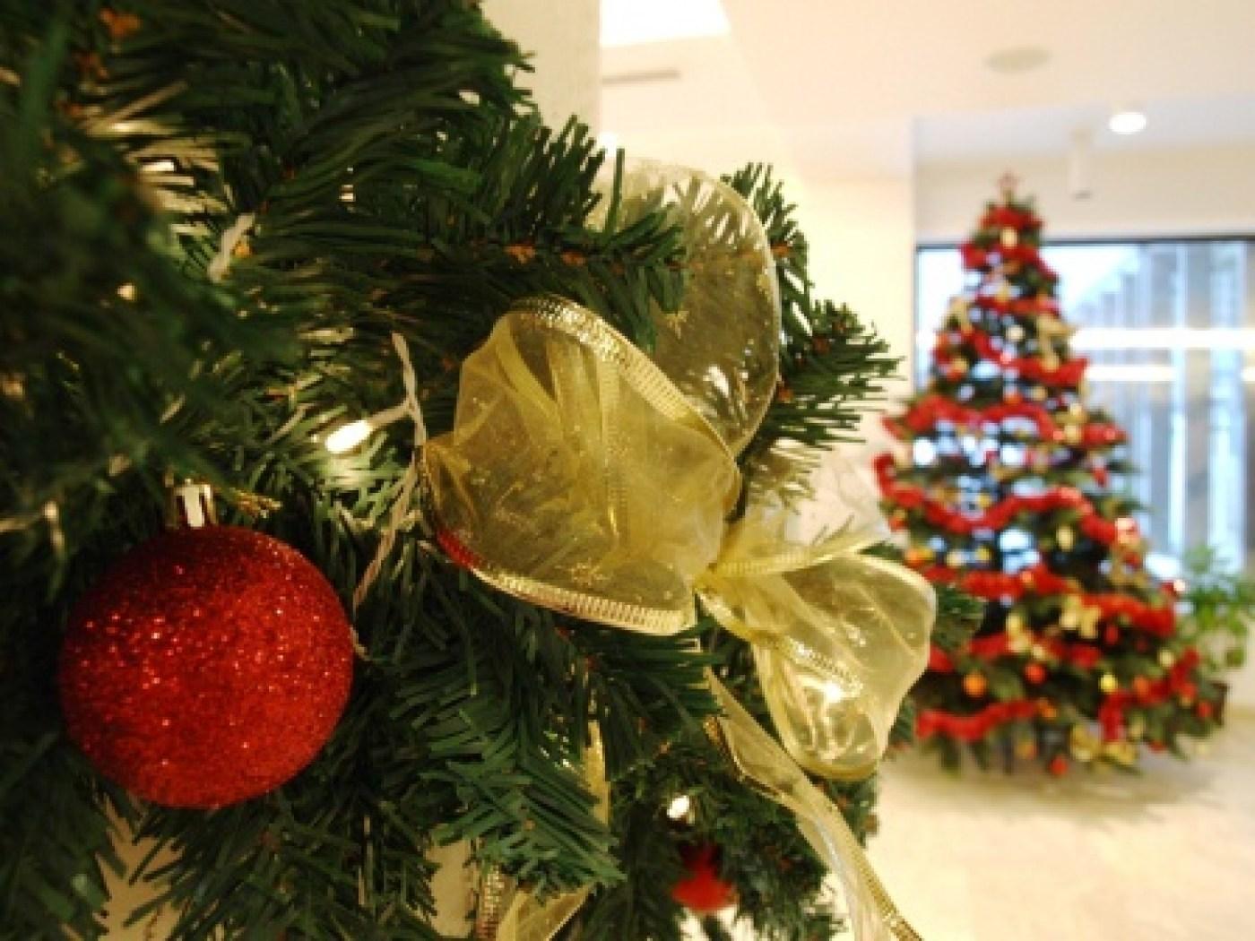 Коледа в хотел Радинас Уей